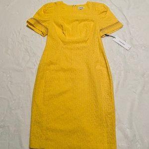 NWT Calvin Klein Eyelet Dress